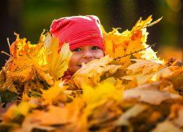 bimbo autunno foglie
